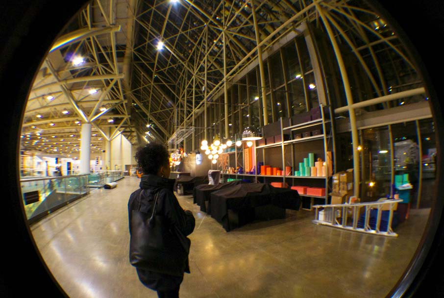IDS-2016-end-of-show-Sharon-through-fish-eye-lens