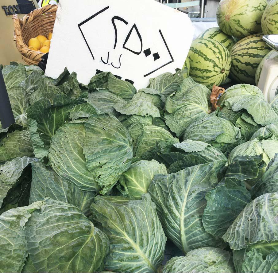 London-Design-Festival-cluster-of-cabbage
