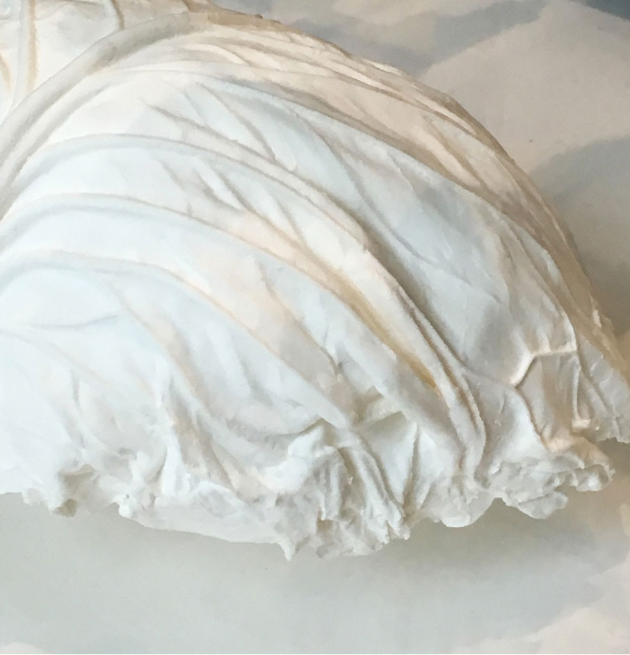 London-Design-Festival-white-plaster-cabbage-leaf