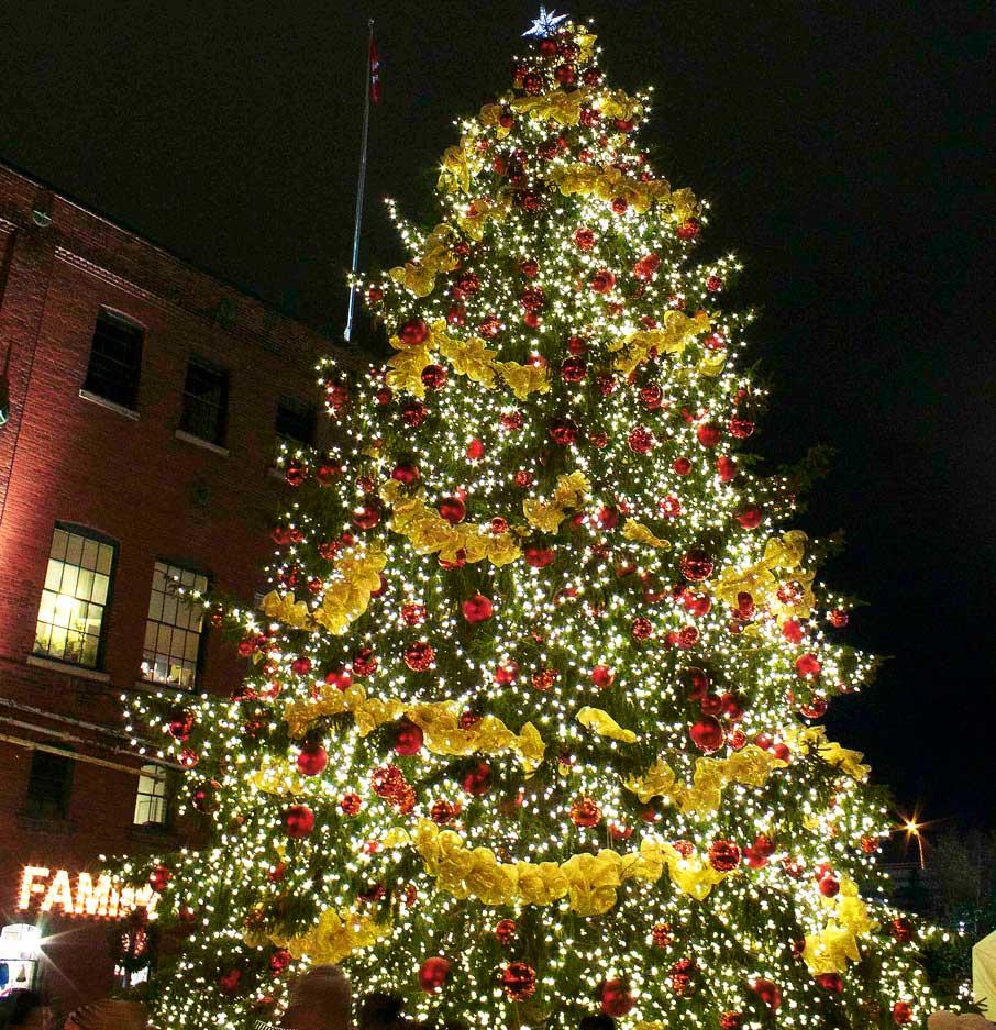 Toronto-Christmas-Market-spectacular-Christmas-tree