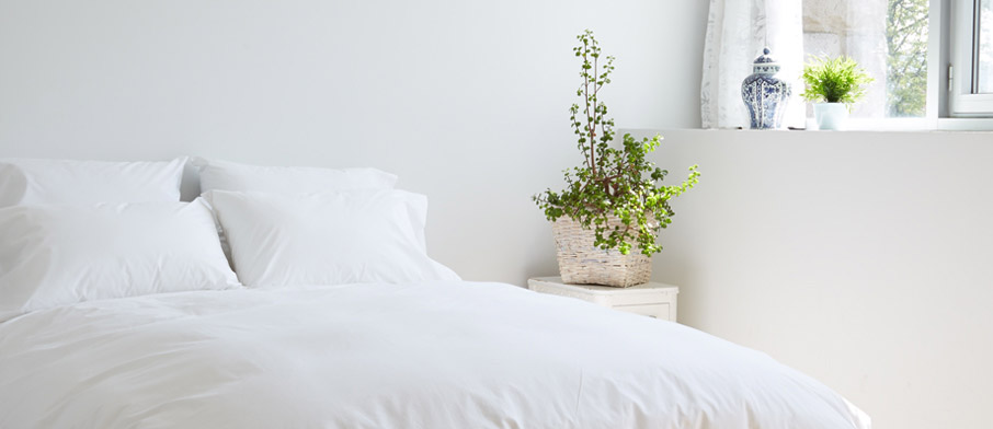 ZayZay-White-Snow-duvet-cover-quality-bed-linen-in-white-room-with-green-plant