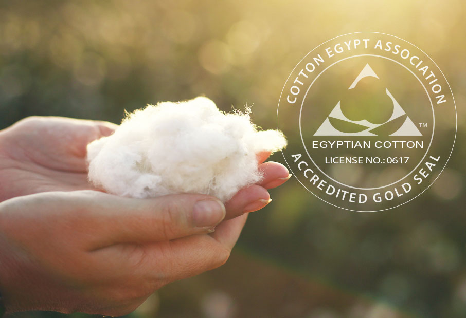 hand-holding-cotton-and-cotton-egypt-association-logo